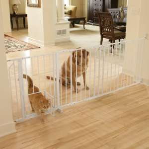 Carlson Maxi Extra Tall Walk Thru Gate with Pet Door Pet