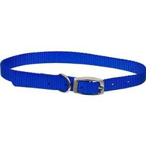 5/8 Single Ply Nylon Dog Collar in Blue, Medium