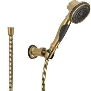 Delta Faucet 55021 CZ Wall Mount Hand shower, Champagne